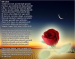 Bir Gece - M.Akif Ersoy