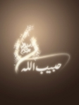 Islamic Mobile Wallpapers (146)