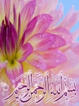 Islamic Mobile Wallpapers (21)