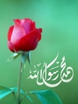 Islamic Mobile Wallpapers (364)